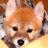 仙田正俊 | Social Profile