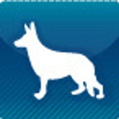 犬井   Social Profile