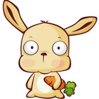 胖兔子   Social Profile