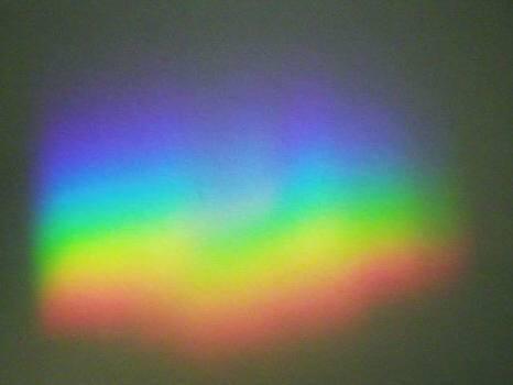 彩雲 (航空機)の画像 p1_6