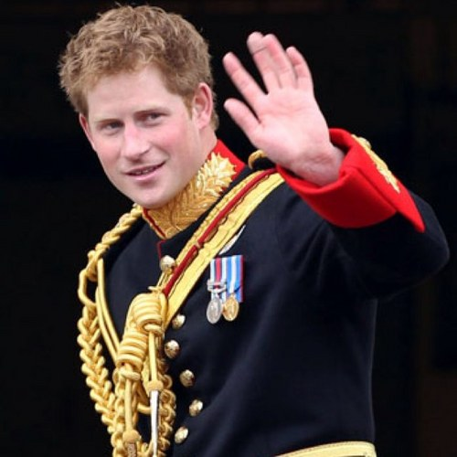 Prince Harry Social Profile
