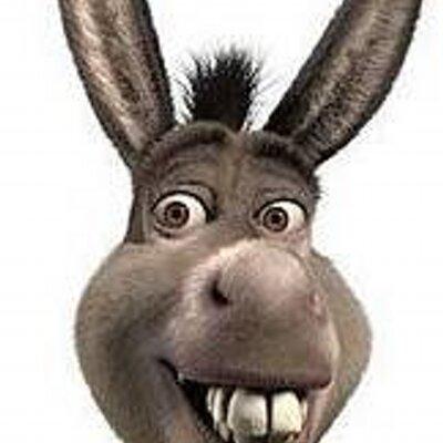 Mr. Donkey   Social Profile