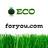@ecoforyoucom
