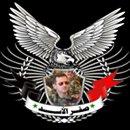 صقر الأسد | Social Profile
