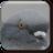 wandering.pigeon