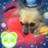 hiro_a_panda