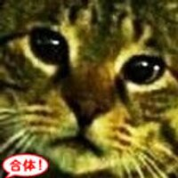 むめ | Social Profile