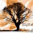 mohamed (@01011561139) Twitter
