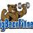 BigBearFitness profile