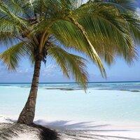 Vakantie4All