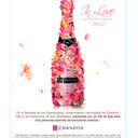 Photo of Chandoncolombia's Twitter profile avatar