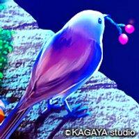 猫野 夢羅 | Social Profile