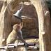 とべ動物園を応援する写真クラブ [公式] (@tobezoophoto)