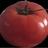 tomato__bot