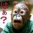 @yobun_ogimi