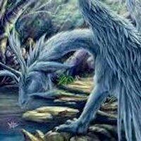 CriticalDragon1177 | Social Profile