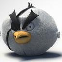 Photo of thebeepbird's Twitter profile avatar
