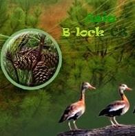 Asia B-Lock CZ s.r.o