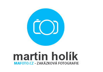 Martin Holik