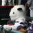 The profile image of yotaro123
