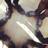まりりん | Social Profile