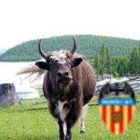 牛のひと | Social Profile