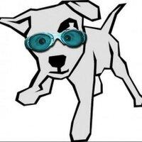 spot_the_dog (sdog) | Social Profile