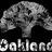 Oaklandtime profile