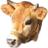CowWolf