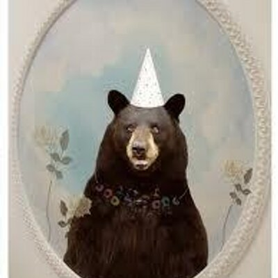 The Cape Cod Bear | Social Profile