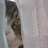 The profile image of zzw30maki