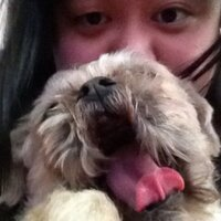 Lily Tsui | Social Profile