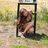 @Zoologist_Jess