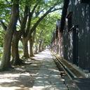 酒田観光物産協会