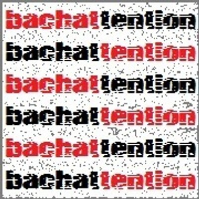 bachattention | Social Profile