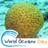 @Biodiv_conseil