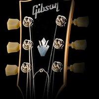 Gibsonsuramerica | Social Profile