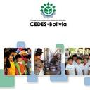 Cedes - Bolivia