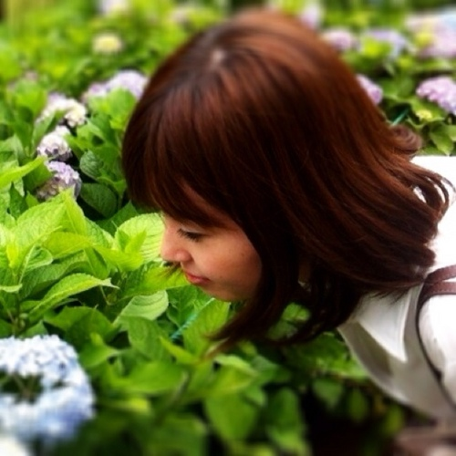 The profile image of hitomi_tw