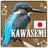 @kawasemi4053