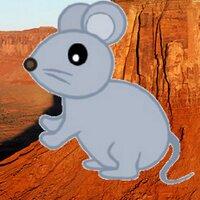 鼠後輩 | Social Profile