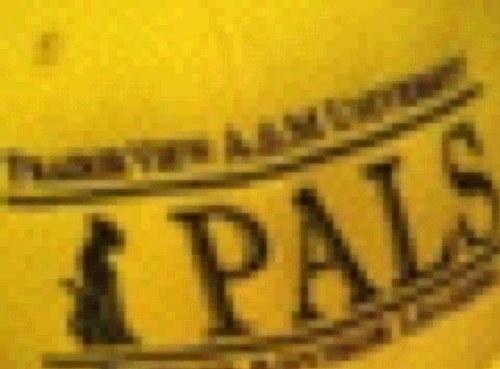 PVAMU PALS Social Profile