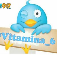 Vitamina 6 | Social Profile
