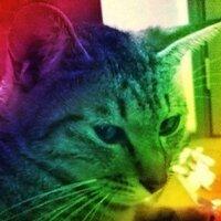 ひろし! | Social Profile