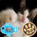 ポノちゃん(加速度70.0倍)冬モード Social Profile
