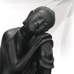 BuddhaGroove.com Social Profile
