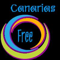 Canarias Free | Social Profile