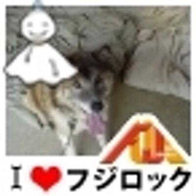 korosuke   Social Profile