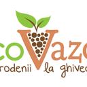 ecoVazon