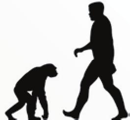 Kreacionismus Cz